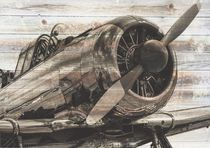 Vintage Airplane von past-presence-art