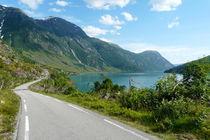 Norwegian Road in Sogn og Fjordane, Norway von Tobias Steinicke