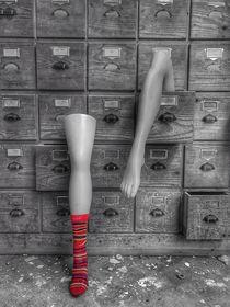 Legs  von Susanne  Mauz