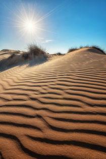 Die Sonne in der Wüste by Raid  Omar