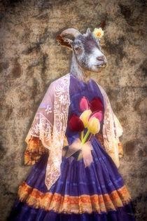 Mademoiselle Chèvre von garrulus-glandarius