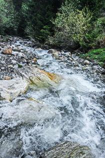 Fresh River  by Enache Armand Iustinian
