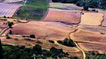 landscape andalus von k-h.foerster _______                            port fO= lio