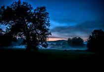 Foggy Evening in Vermont - Landscape by James Aiken