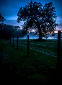 Foggy Evening in Vermont - Portrait by James Aiken