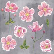 Japanese Anemone Flowers von Nic Squirrell