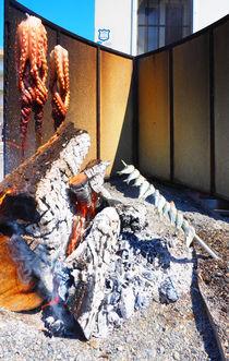 grillfest von k-h.foerster _______                            port fO= lio