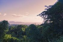 Morning Landscape by cinema4design