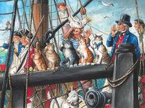 Schiffskatzen der HMB Endeavour by Jonathan Petry