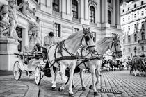"""Fiaker"", hackney coach, horse drawn carriage in Vienna von Silvia Eder"
