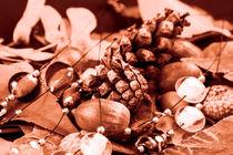 Tempore autumni by Michael Naegele
