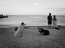 Beach in Odessa, Ukraine von Daria Mladenovic