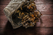 Korb gekriegt von Petra Dreiling-Schewe