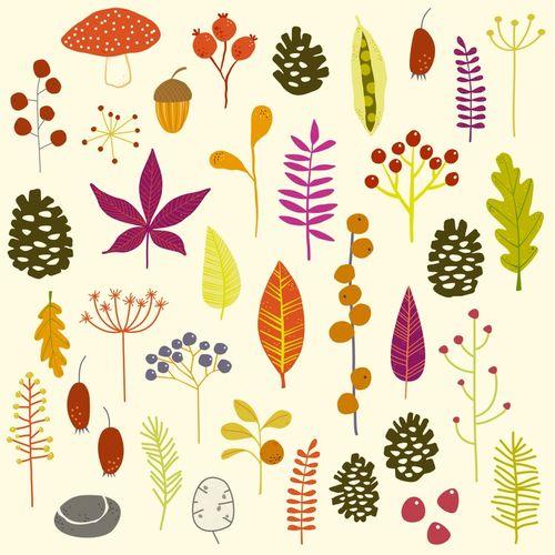 Autumn-fall-nature-bits