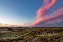 Dünenlandschaft Thy von Stephan Darm