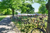 Fahrräder am sommerlichen Aasee in Münster mit Aaseekugeln von Münster Foto