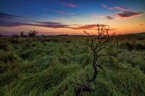 Sonnenaufgang in Thy  von Stephan Darm