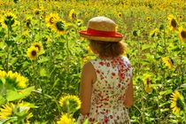 Sunflower girl by Claudia Evans