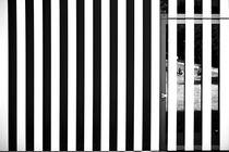 Im Spiegel die Wiese von Bastian  Kienitz