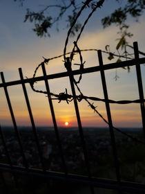 Stacheldraht im Sonnenuntergang  von farbfotografie
