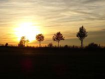 Sonnenuntergang von Regina Raaf