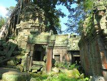 Königreich Kambodscha und Angkor Wat - Ta Prohm von mellieha