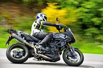 Triumph Tiger 1050 Motorrad on Speed von ivica-troskot