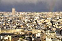 Paris Altstadt von Eiffellturm gesehen von ivica-troskot