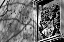 Bamberg schwarz-weiß von wandernd-photography