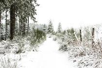 Im Schnee von Regina Raaf
