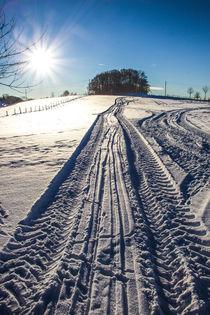 Spuren im Schnee von Regina Raaf