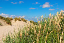 Naturimpression Texel von AD DESIGN Photo + PhotoArt