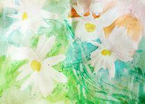 daisies by Maria-Anna  Ziehr