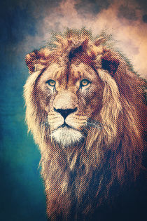 Young Lion by AD DESIGN Photo + PhotoArt