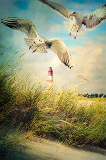 Maritime Impression by AD DESIGN Photo + PhotoArt
