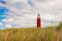 Sommerimpression Leuchtturm Texel von AD DESIGN Photo + PhotoArt