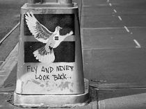 Fly and never look back by Frank Daske