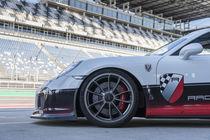 Porsche 911 GT3 R von Stefan Rogas
