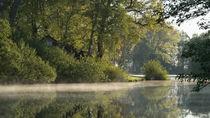 Morgennebel bei Melchers Hütte von Jens Welsch