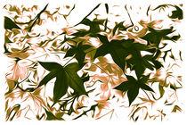 Blätter von mario-s