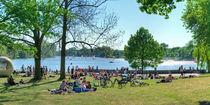 Münsteraner Aasee-Wiesen mit entspannten Menschen im Sommer by Münster Foto