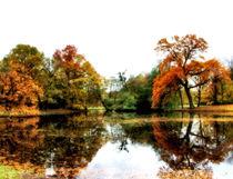 Herbstspiegel von garrulus-glandarius