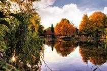Herbstteich in der Südheide von garrulus-glandarius