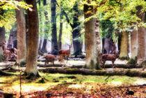 Rehe im Herbstwald von garrulus-glandarius