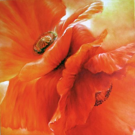0604-roter-mohn
