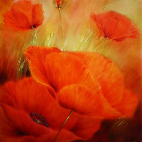 1509-roter-mohn