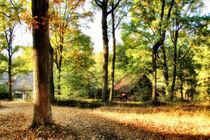 Walddörfchen von garrulus-glandarius