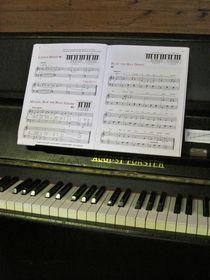 Am Klavier von maja-310