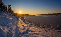 Path on the snow von Nuno Borges