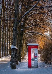 Red phonebooth by Nuno Borges